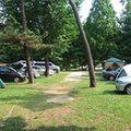 【厳選】関東地方のおすすめキャンプ場3選!人気・穴場のキャンプ場をご紹介!