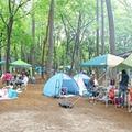 千葉県の初心者も楽しめるキャンプ場おすすめランキング15!コテージ情報も!