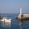 大洗港の釣り情報まとめ!釣れる魚やポイント、気になる駐車場までご紹介!