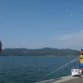 三崎港の釣り情報まとめ!釣れるポイントや狙える魚を解説!禁止エリアは?