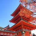 京都で秋冬に行きたいおすすめドライブスポット13選!この時期の観光にはココ!