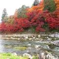 東海エリアで秋冬に行きたいおすすめドライブスポット12選!絶景も楽しめる!