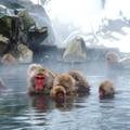 冬の長野を満喫できる観光スポットおすすめ12選!冬のお出かけにはココ!