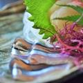 鹿児島で一度は食べたいご当地グルメおすすめ13選!名物料理を堪能しよう!