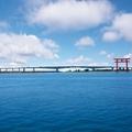 浜名湖に釣りに行こう!おすすめのポイントや釣れる魚種の釣り方を解説!