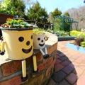 庭にタイルやレンガを敷いて雑草対策!簡単にできるポイントを解説!
