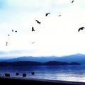 【2019】船越漁港に行こう!牡蠣小屋解禁情報と釣りのポイントをご紹介!