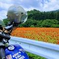 秩父地元ライダーが教えます!埼玉県秩父のツーリングスポット10選!