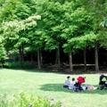 2020!三重のおすすめピクニックスポット13選!デートに人気なおしゃれな公園も!