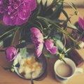 【連載】花屋目線で紹介!4月にお花屋さんで買える旬の花はどれ?