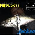 【ジャクソン】初心者向け軽装備でお手軽アジング!