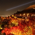 【2020】京都の紅葉スポット人気16選!秋に一度は行きたい絶景名所はココ!