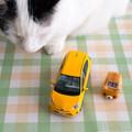 ソリオを車中泊仕様に改造!自作アレンジ例や便利グッズをご紹介!