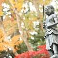 秋に行かなきゃ損!高尾山の紅葉を徹底解説!絶景スポットや見頃の時期とは?